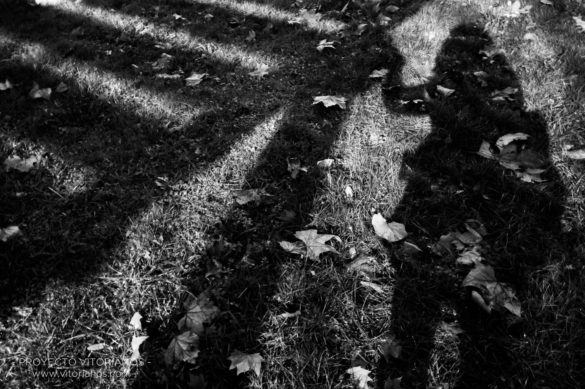 Sombra en césped - Foto: Ana Iglesias