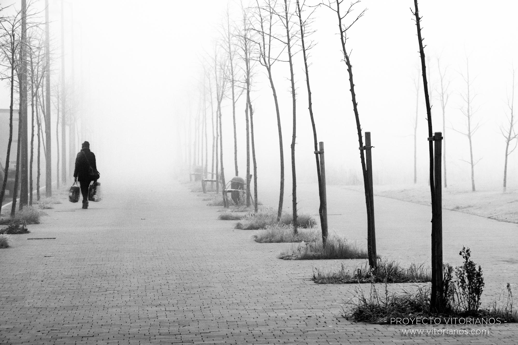 Paseo en la niebla - Foto: José Antonio Eguiara