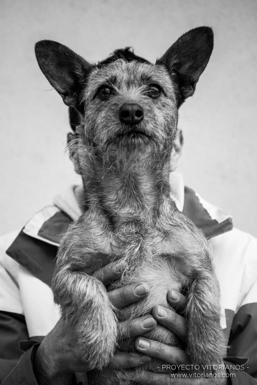 Perro en brazos - Foto: Toñi Pérez