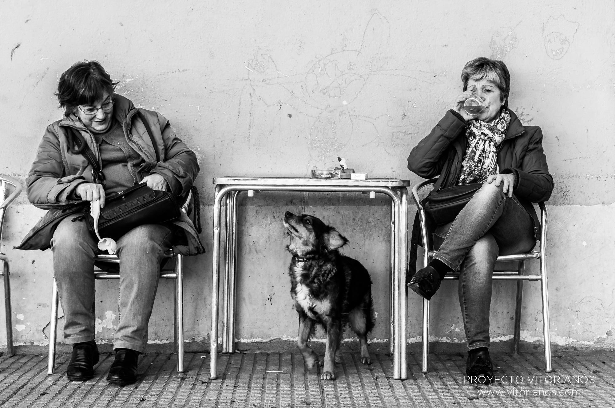 Vitorianas con su perro - Foto: Manu Moreno